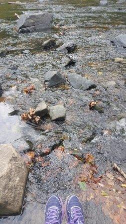 Ellicott City, MD: River