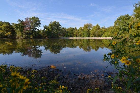 Carbondale, IL: The lake