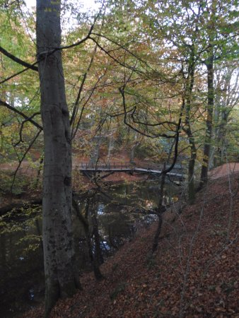 Saeby, Denmark: Broen ved enden af stien