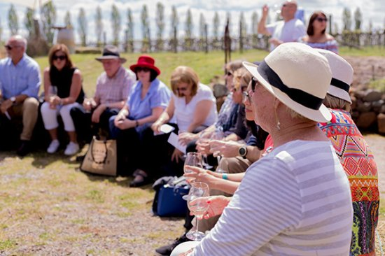 Орандж, Австралия: Packaged group tours to experience local vineyards differently