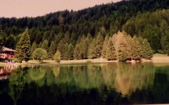 Pellizzano, İtalya: Bellissimo il lago dei caprioli