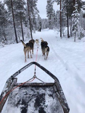 Ivalo, Finland: photo0.jpg