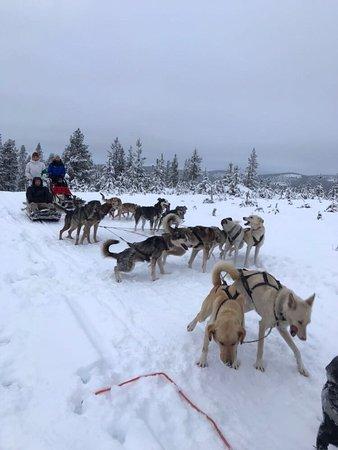 Ivalo, Finland: photo1.jpg