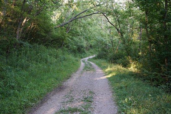 Covington, KY: Doe Run Lake