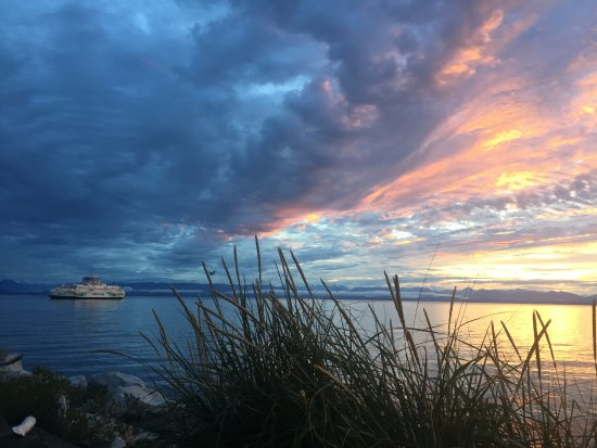 Comox, Canada: Thats how magical and stunning the days start at Singing Sands 3 H Yoga Sanctuary.