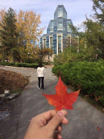 Ottawa, Canada: Major´s Hill Park, al fondo la Galería Nacional.