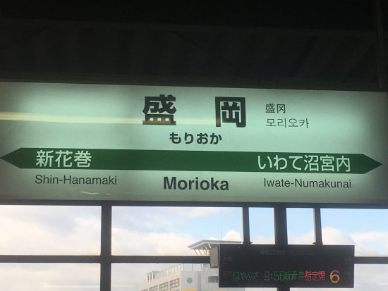 JR East Tohoku Area : はやてと盛岡駅