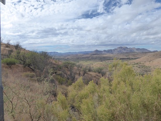 Patagonia, AZ: The countryside south of the park looking toward Mexico