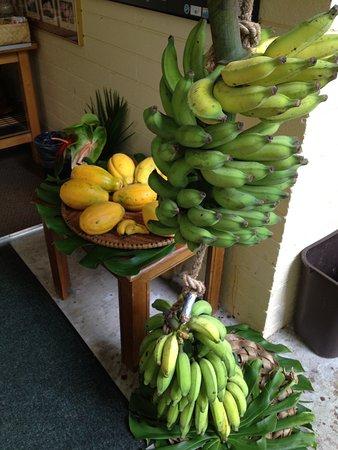 Dolphin Bay: Part of breakfast, fresh fruits & bananas