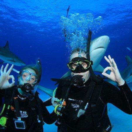 جزيرة بروفيدانس الجديدة: Stuart Cove's Dive Bahamas