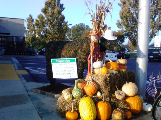 Anderson, Carolina del Sud: Fall cow display out front