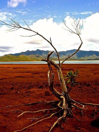 Grande Terre, Nueva Caledonia: Le paysage lunaire et désertique du Grand Sud