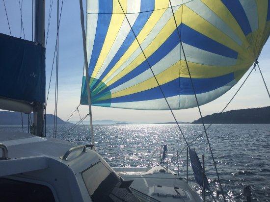 Amelia Catamaran Charters