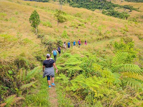 Koroyanitu National Heritage Park: The fine trail on hill tops