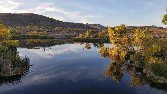 Patagonia, Аризона: nature to love