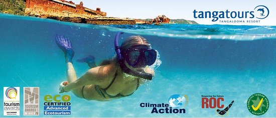 Tangalooma Dive & Watersports