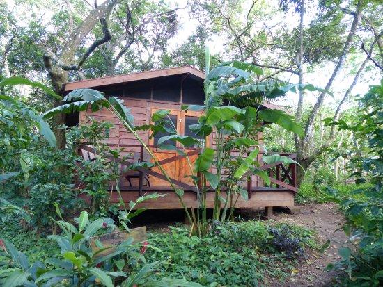 Mombacho Volcano, Nicaragua: Cottage 2