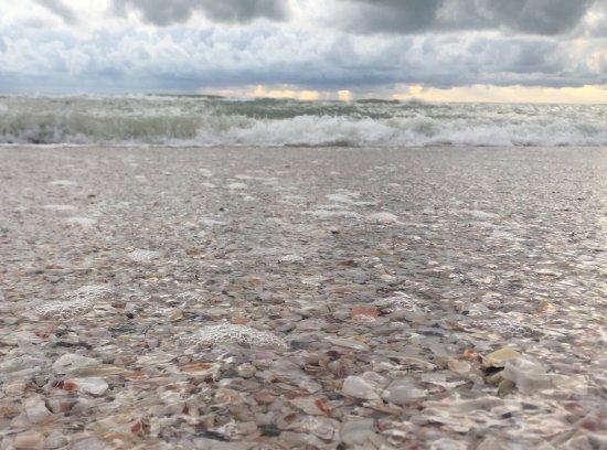 Treasure Island, FL: photo2.jpg