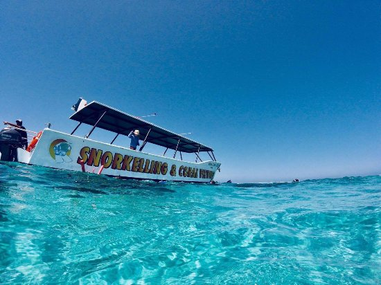 Coral Bay, Australia: Stop at the outer reef site for some snorkeling