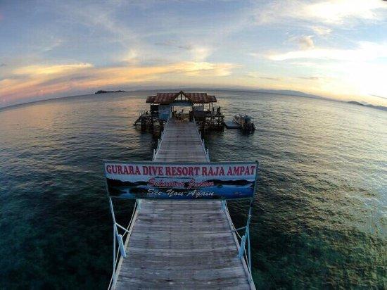 Gurara dive resort raja ampat indonesien omd men och prisj mf relse tripadvisor - Raja ampat dive resort reviews ...