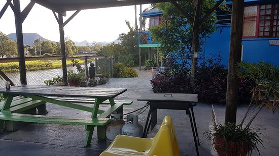 Murwillumbah YHA - Riverside Backpackers: 20171114_171917_large.jpg