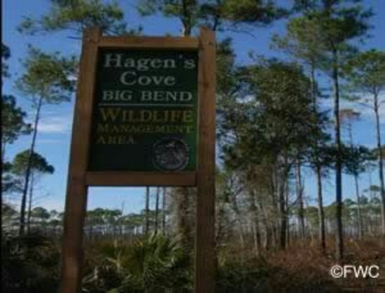 Perry, FL: hagens_cove_sign_1_300x228_fwc_large.jpg