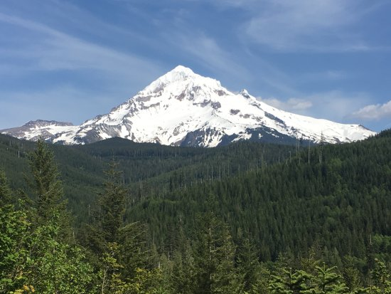 Welches, Oregón: view of Mt Hood