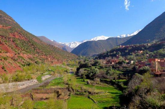 Ourika Valley Private Day Tour...