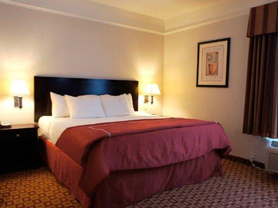 La Quinta Inn & Suites Mansfield: Suite
