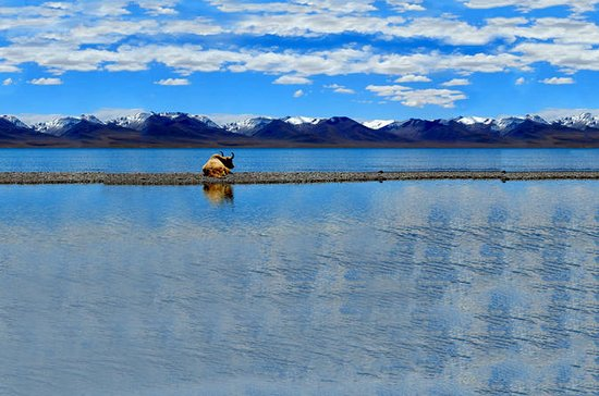 5-Night Tibet: Lhasa and Namtso Lake with Travel Permit