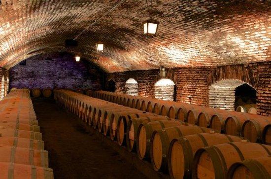 Santa Rita and Concha y Toro Wineries...