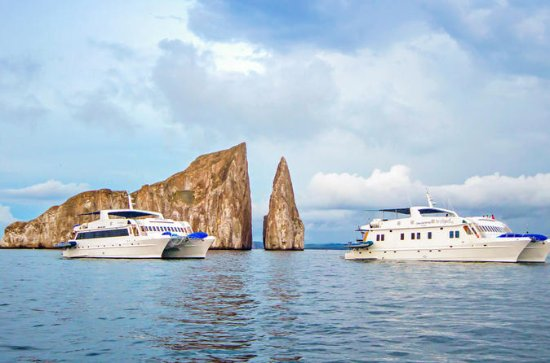 Galapagos Islands Cruise: 8-Day...