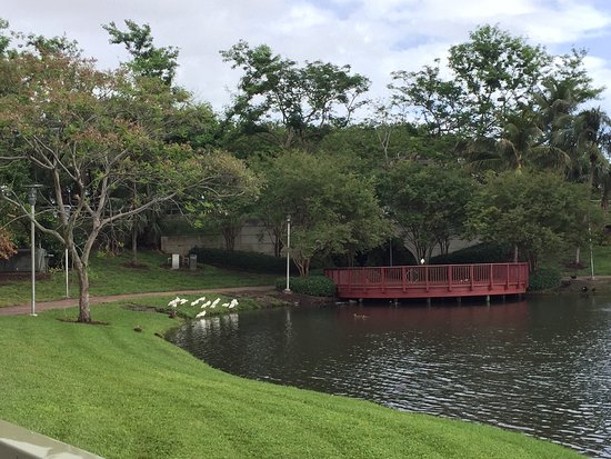 Palm Beach Gardens, Floryda: photo2.jpg