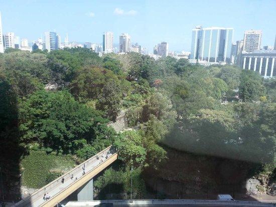 Kowloon Park: 公園に接したビルのオフィスから