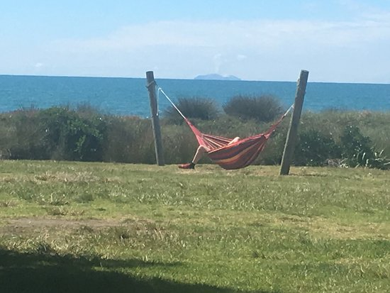 Opotiki, Nueva Zelanda: photo1.jpg