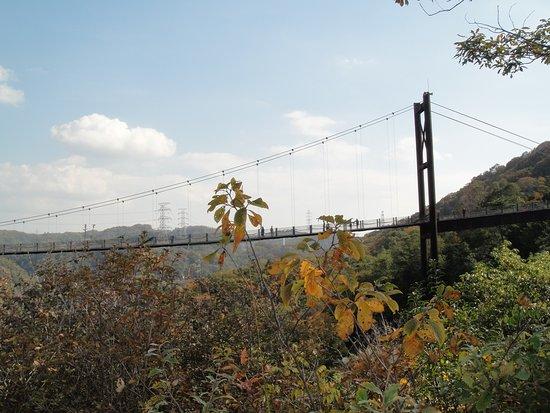 Hoshi no Buranko Bridge