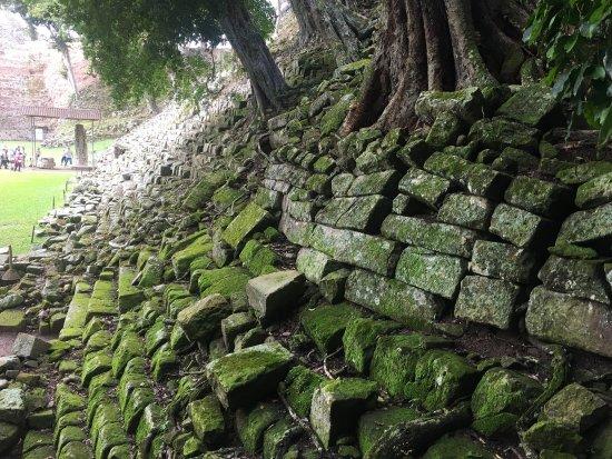 Les Ruines de Copan : photo3.jpg