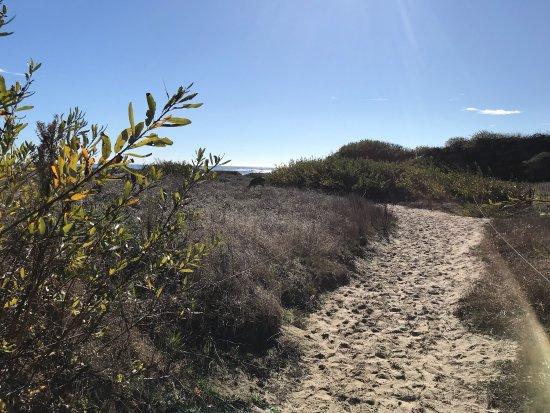 Pescadero, Californië: photo3.jpg