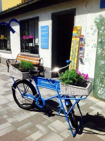 Fahrradverleih Koblenz RueckenWind