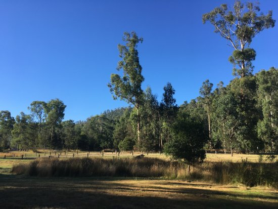 Yea, Australia: 아름답고 고요한 곳