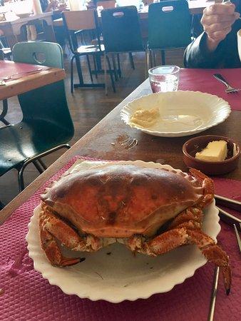 Saint-Philibert, France: 1er crabe, et ça c'est à volonté