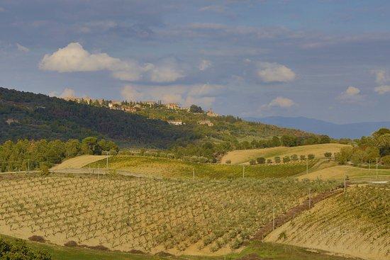 Asciano, İtalya: Aussichten