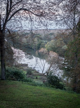 Montreuil-sur-Loir, Fransa: Another view of the river Loir taken from our bedroom window