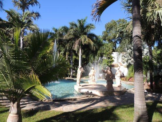 Billede af jardin botanico molino de inca for Jardin botanico torremolinos