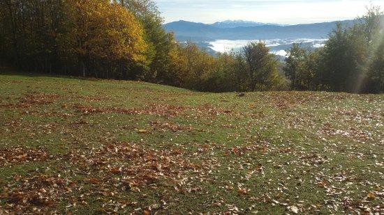 Bedonia, Ιταλία: a 8 km dopo Montarsiccio , sul Segalino, è possibile vedere la catena dell'Orsaro (MS)