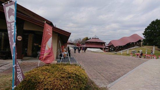 Kasama Foto