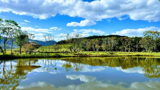 Santa Rita do Sapucaí, MG: Pesqueiro Tô à Toa