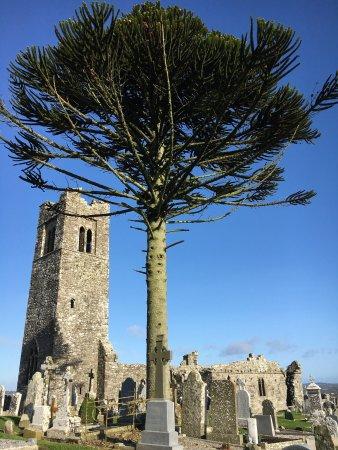 Σλέιν, Ιρλανδία: photo0.jpg