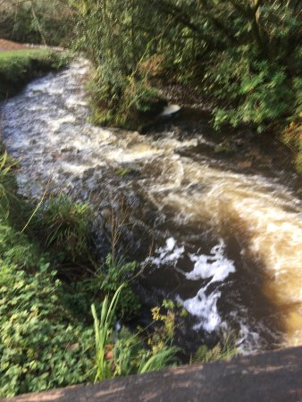 Leitrim, أيرلندا: photo6.jpg