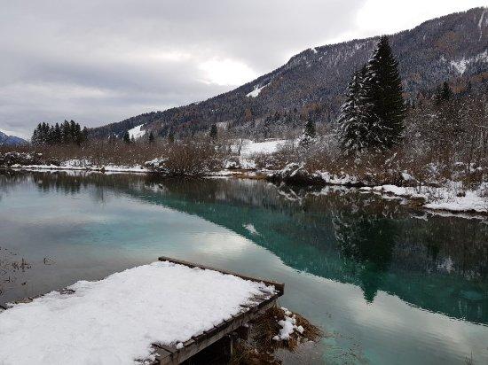 Kranjska Gora, Słowenia: Zelenci Nature Reserve